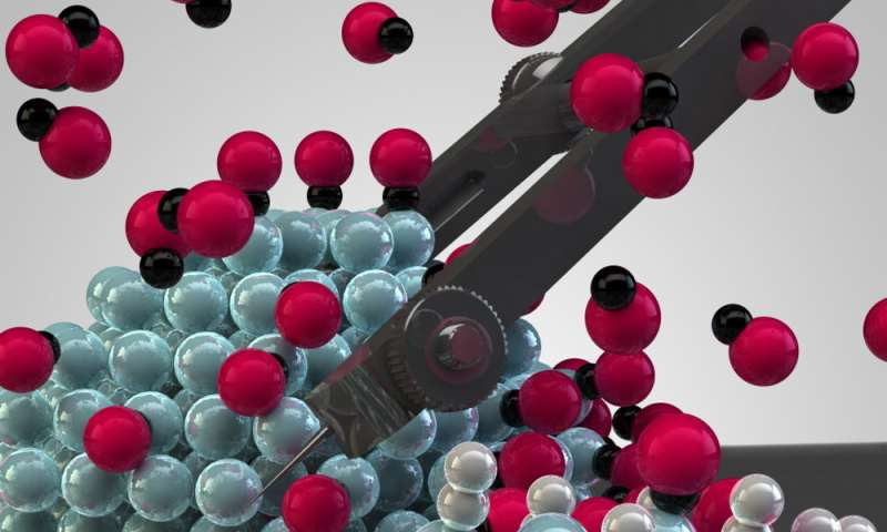 Unlocking the potential of metal nanoparticles as catalysts for fast and efficient CO2 conversion