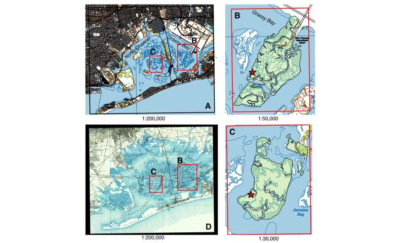 Urbanization is cutting off life support to NYC's wetlands