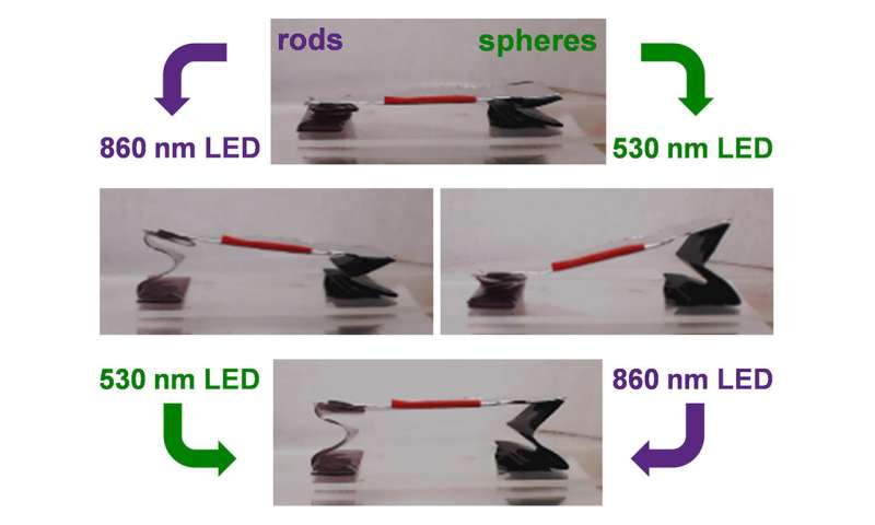 Using Gold Nanoparticles to Trigger Sequential Unfolding of 3-D Structures