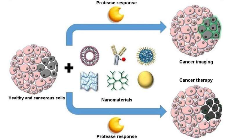 Using nanomaterials that respond to cancer-specific stimuli for targeted delivery of treatments and imaging compounds