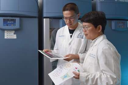 UTSW scientists identify body's microreactors for innate immunity