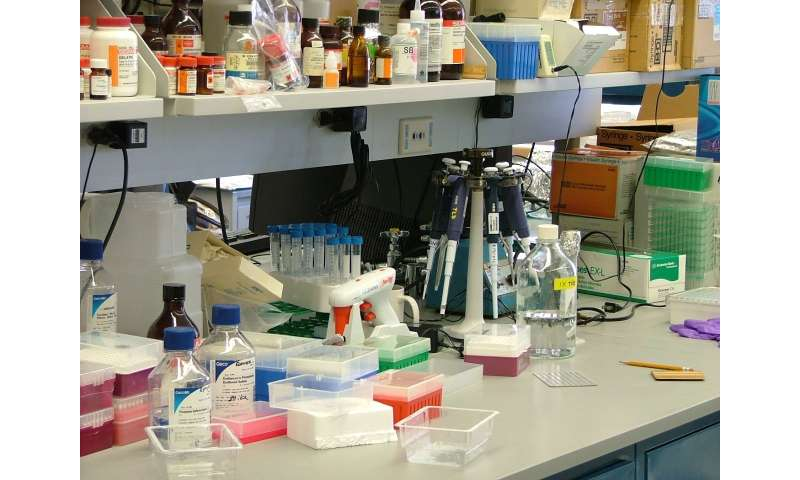 Vaccine, checkpoint drugs combination shows promise for pancreatic cancers
