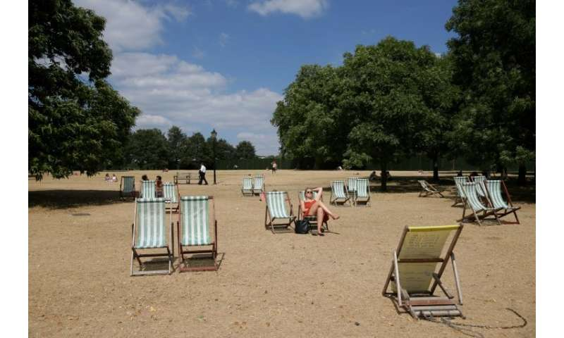 Visitors set out deck chairs on the parched grass of London's Hyde Park
