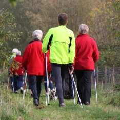 Walk in groups to keep exercise goals on track