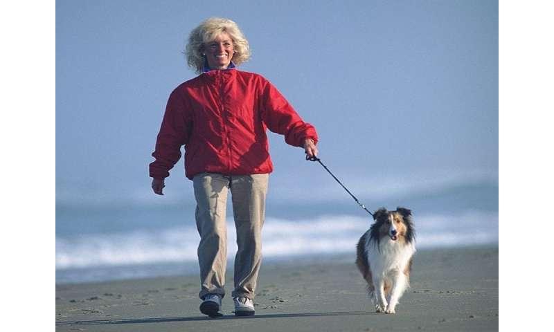 Walking: still the starting line for fitness