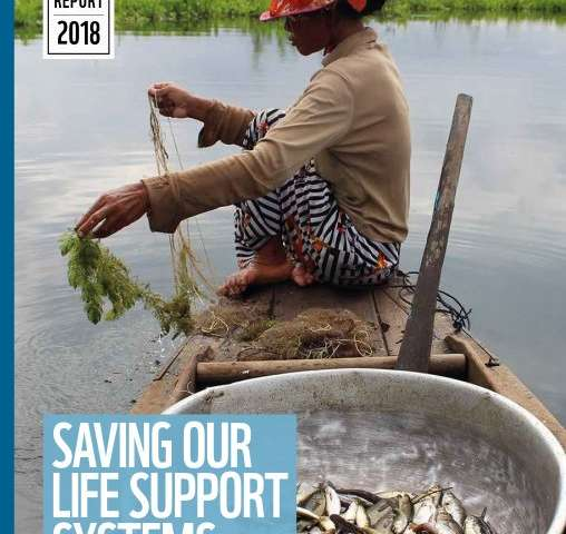 Wetlands, our life support systems, need more than drip-by-drip assistance, warns new report