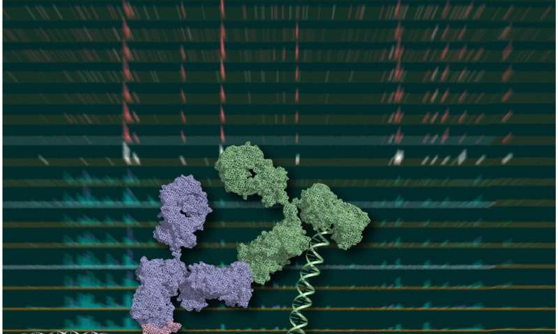 When less is more: A promising approach for low-cell-number epigenomic profiling