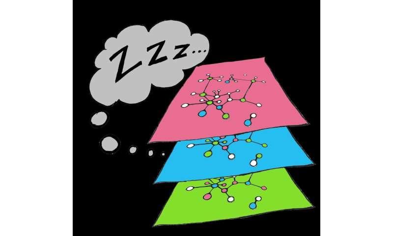 Why the system needs sleep