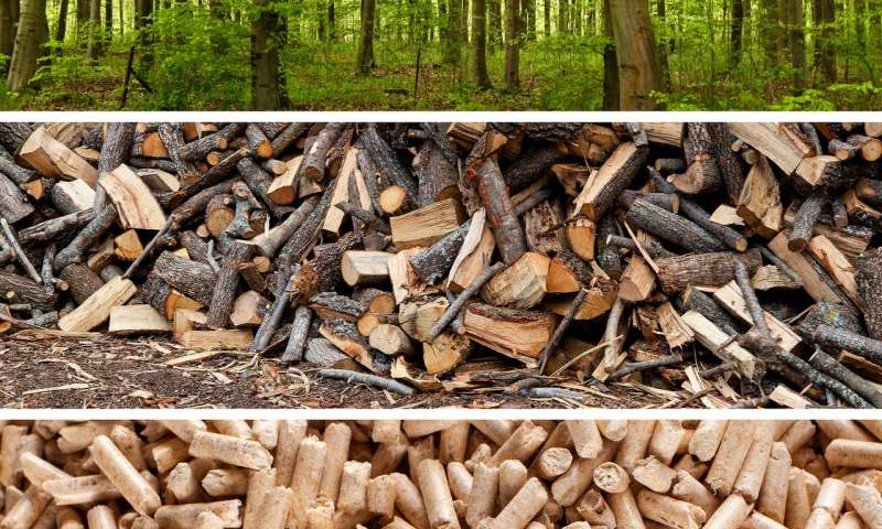 Wood pellets: Renewable, but not carbon neutral