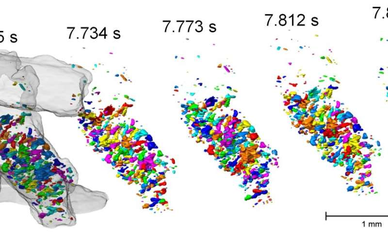 World record: Fastest 3-D tomographic images at BESSY II