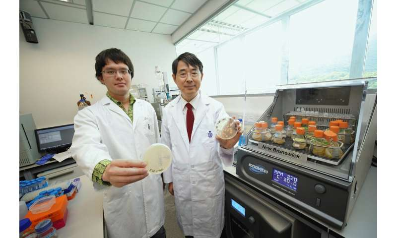 Researchers unlock cancer-causing mechanism of E. coli toxin with synthetic biology approach