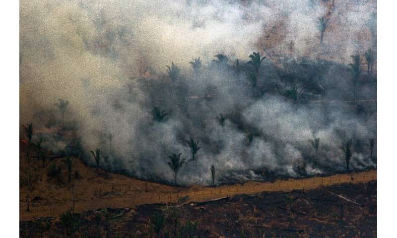Aerial view showing smoke billowing from a patch of forest being cleared with fire in the surroundings of Boca do Acre, a city i