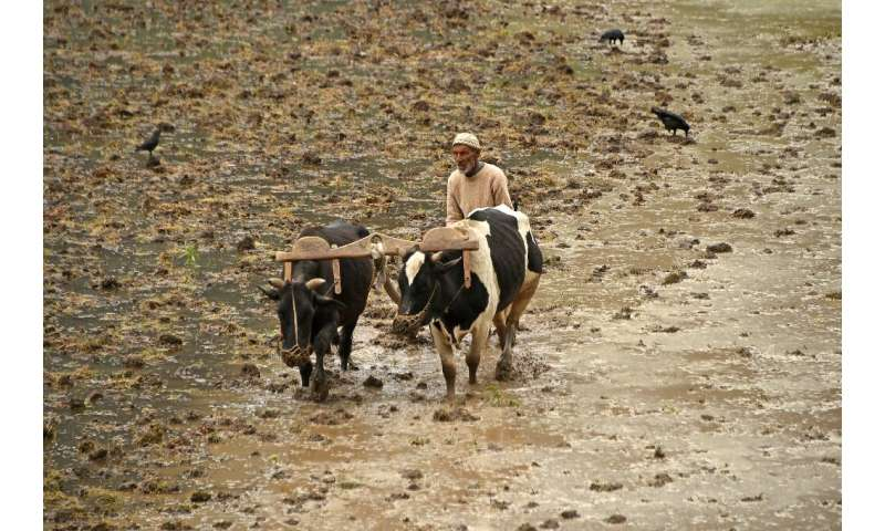 Agricultural systems now use a third of all land and three quarters of all fresh water on the planet