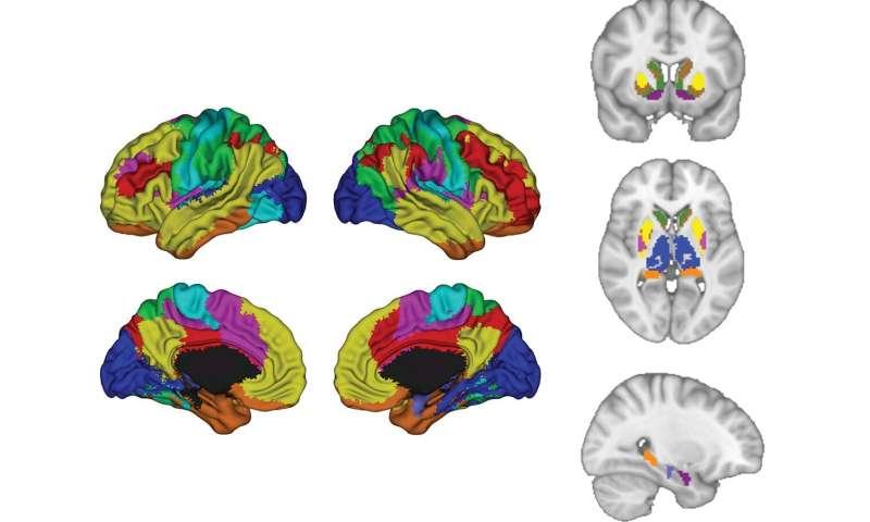 AI helps scientists predict depression outcomes