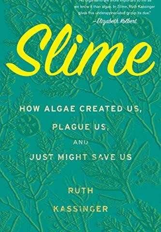 Algae: here, there, and everywhere
