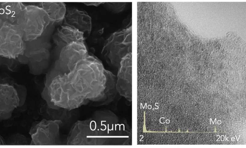 Ammonia synthesis made easy with 2D catalyst