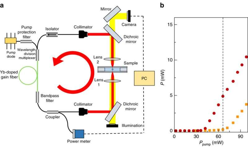 A new force for optical tweezers