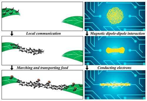 'Ant bridge'-inspired nanoparticle assembly fixes broken electrical circuits
