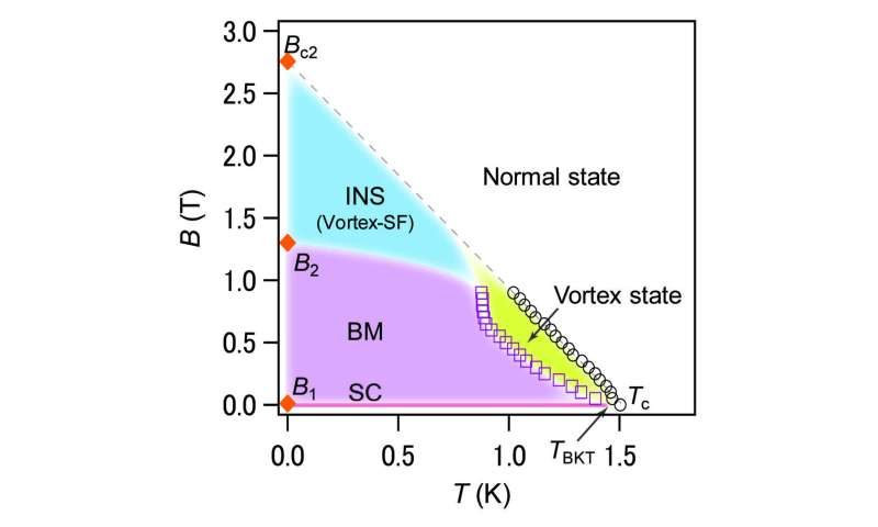 A peculiar ground-state phase for superconductor NbSe2 -- It's a Bose metal!