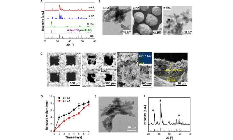 Application of hydroxyapatite nanoparticles (n-HA) in tumor-associated bone segmental defect