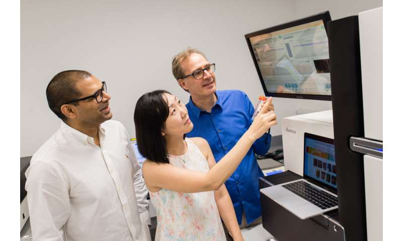 Asia-wide genome mapping project reveals insights into Asian ancestry and genetic diversity