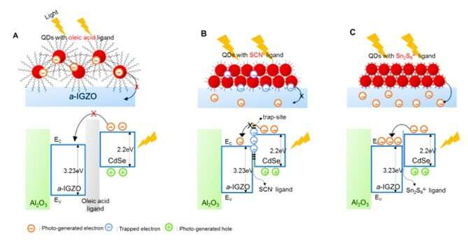 A skin-like two-dimensionally pixelized full-color quantum dot photodetector