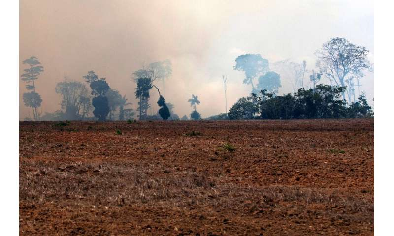 A smoke cloud is seen over a burnt area after a fire in the Amazon rainforest, in Novo Progresso, Para state, Brazil, on August