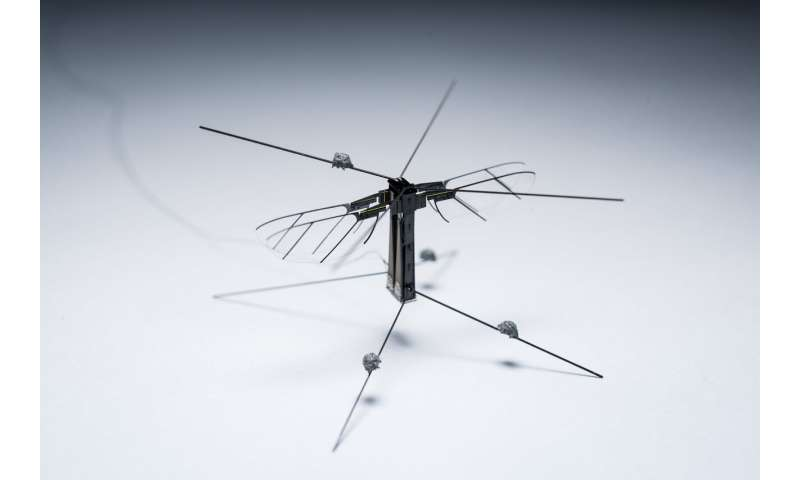 A unifying approach for controlling flying robotic insects