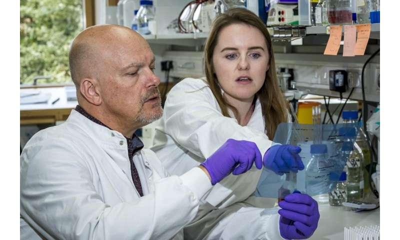 Blocking a survival mechanism could tackle melanoma treatment resistance