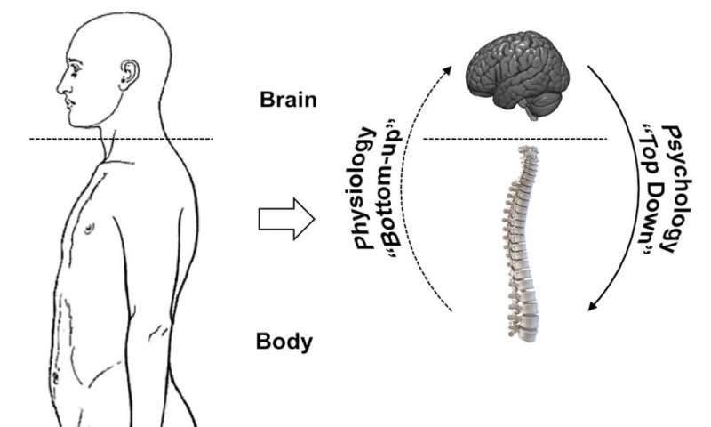 Brain over body: Hacking the stress system to let your psychology influence your physiology