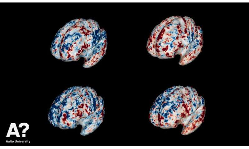 Brain scans reveal how people understand objects in our world