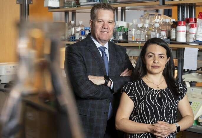 Cancer prevention drug also disables H. pylori bacterium