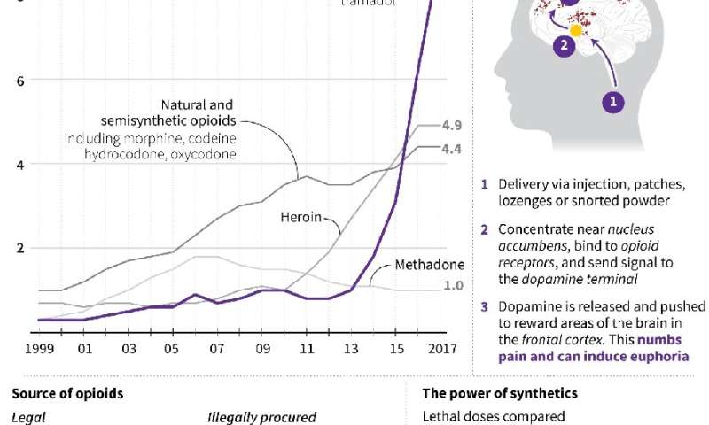 Chart showing US drug overdose death rates by opioid category, source of opioids, and how they work