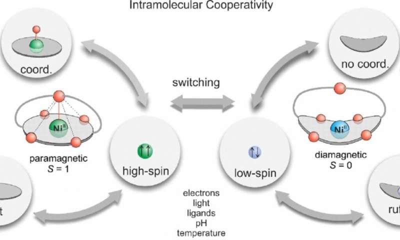 Computing with molecules: A big step in molecular spintronics
