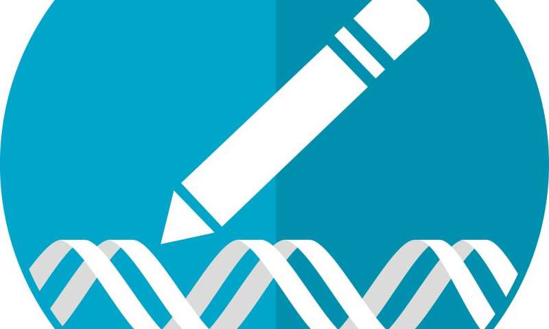 Neuroscientists Reverse Some Autism >> Using Gene Editing Neuroscientists Develop A New Model For