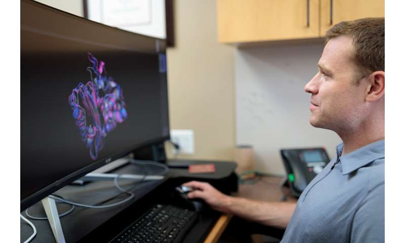 Crowd-sourced computer network delves into protein structure, seeks new disease therapies