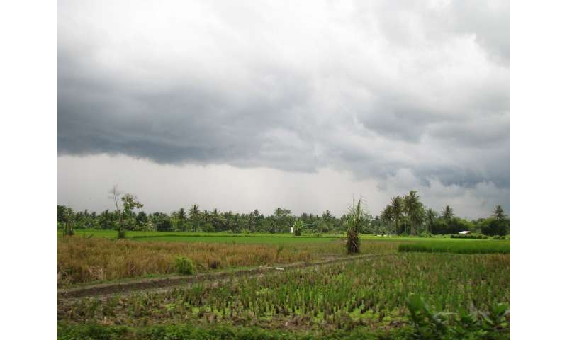 Daily rainfall over Sumatra linked to larger atmospheric phenomenon