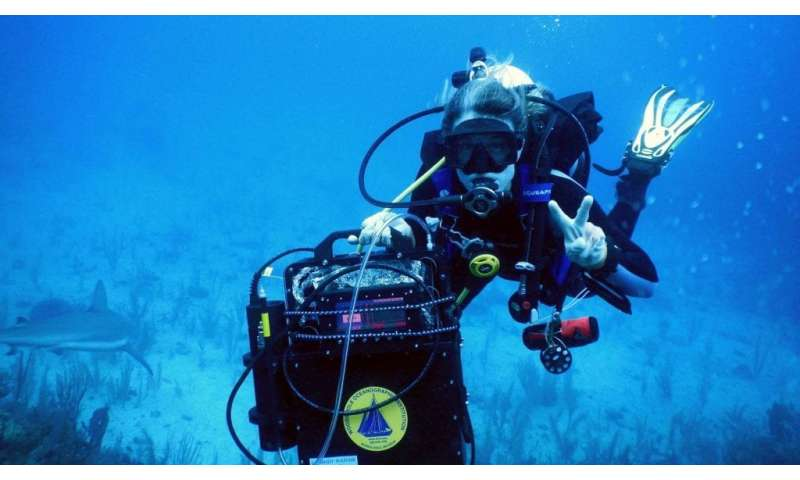 DISCO allows scientists to measure highly reactive superoxide on coral reefs