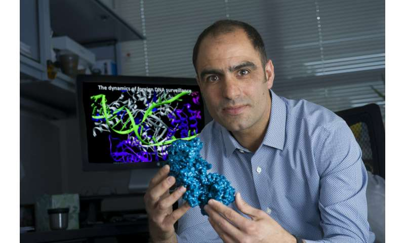 Discovery brings new understanding to sophistication of microbial warfare