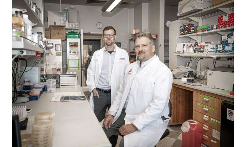 Discovery of how cells override genetic changes