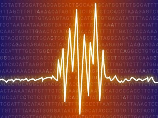 DNA sequencing study suggests common genetic basis for epilepsy
