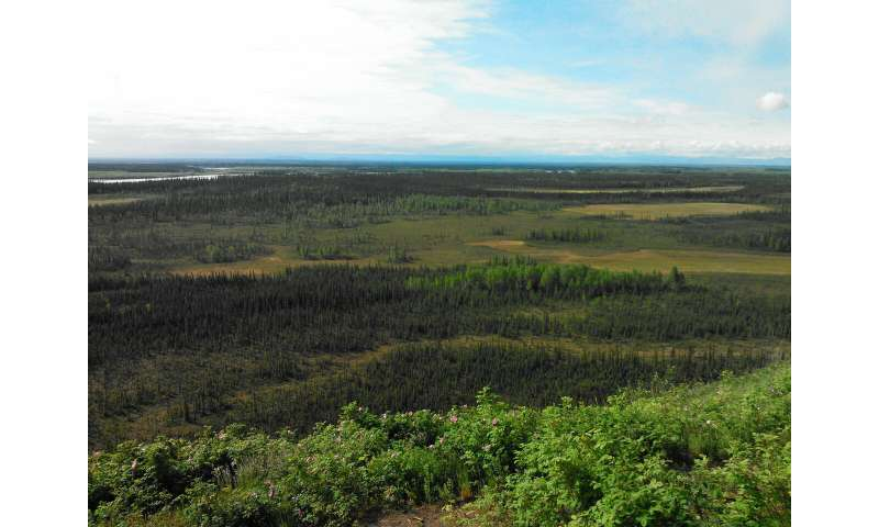 Early spring rain boosts methane from thawing permafrost by 30 percent