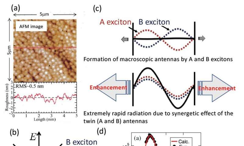 Excitonic radiative decay faster than thermal dephasing in ZnO thin films