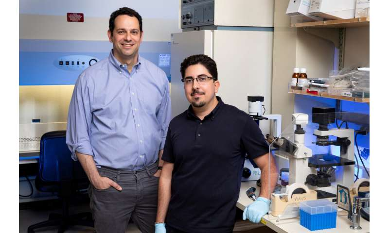 Finding the smallest genes could yield outsized benefits