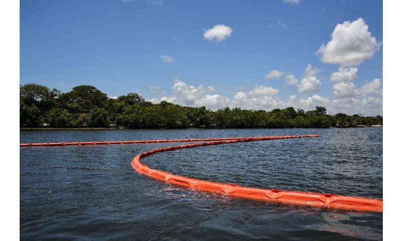 Floating barriers contain oil spilled near mangroves in Cabo de Santo Agostinho, Pernambuco state in October 2019