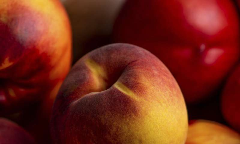 Freeze, can, pickle, dry? Ways to preserve summer produce