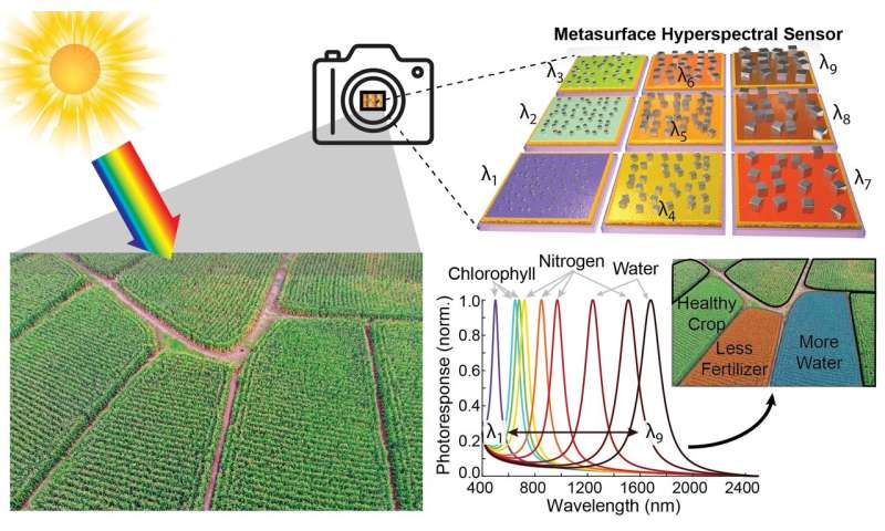Harnessing plasmonics for precision agriculture worldwide
