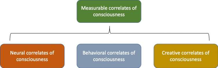 How can you tell if another person, animal or thing is conscious? Try these 3 tests