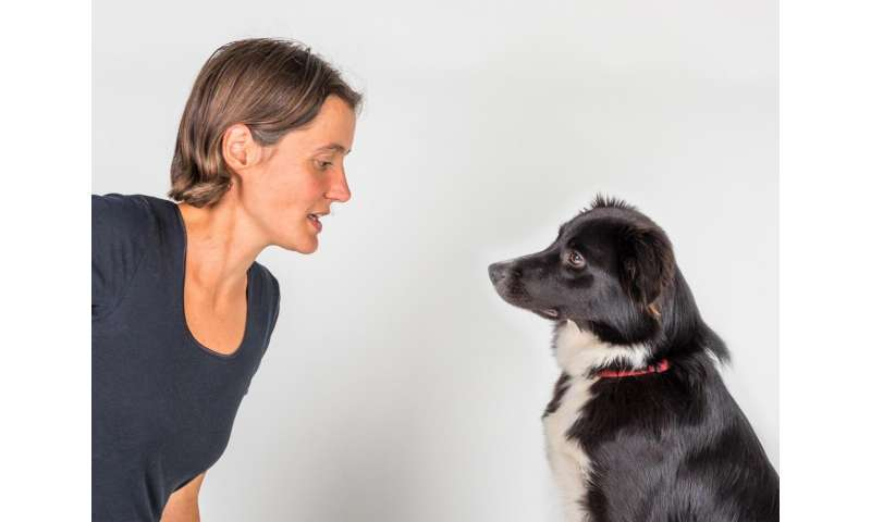 Humans' ability to read dogs' facial expressions is learned, not innate