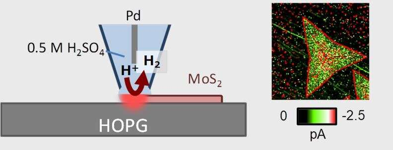 Imaging technique gives catalytic 2D material engineering a better view